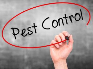 San Antonio Pest Control